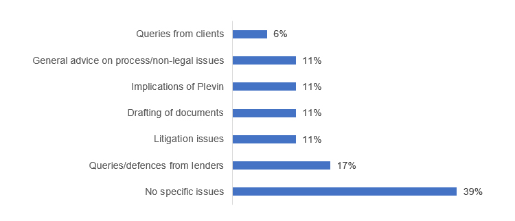 Queries from clients 6%, General advice on process/non-legal issues 11%, Implications of Plevin11%, Drafting of documents 11%, Litigation issues 11%, Queries/defences from lenders 17%, No specific issues 39%